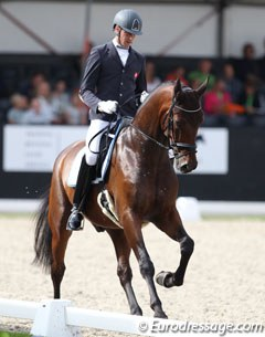 Michael Bugan's Austrian warmblood Floretto DK (by Furstenball x Samba Hit I) was not ready for Ermelo