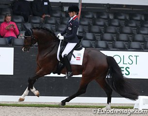 Stephanie Dearing on Claudia Pengg's Roi de Coeur (by Roi du Soleil x Don Gregory). Sweet horse with an elegant trot, a big walk and good balance in the counter canter. The topline needs to strengthen more to sustain elasticity