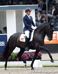 Spanish Guillermo Garcia Ayala did an excellent job in presenting his PRE Poeta de Susaeta (by Cacique) in a relaxed way, preventing the horse's gaits to get hectic
