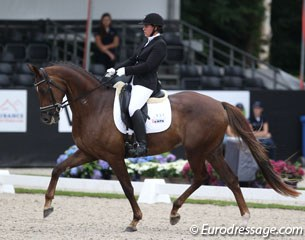Marije van Kersbergen on Hollywood (by Furst Romancier x Johnson). Lots of knee action and roundness in trot, Hollywood had the hindlegs out in the extensions. Very cute and obedient horse.