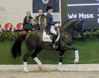 Sprehe and Desperados at the 2018 Sprehe Stallion Show in Vechta :: Photo © LL-foto