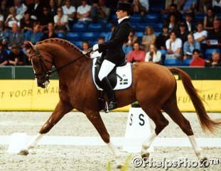 Telde and Maistic at the 1999 World Young Horse Championships :: Photo © Mary Phelps