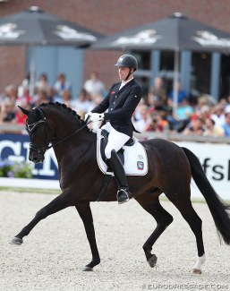 Fior at the 2017 World Young Horse Championships :: Photo © Astrid Appels