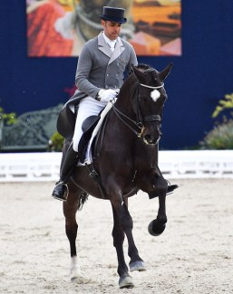 Le Docteur at the 2018 CDI Hagen - Horses and Dreams
