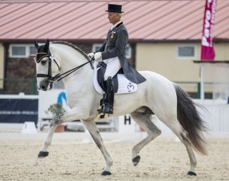 "Juan Antonio Jiménez Cobo and Euclides MOR at the 2018 CDI Segovia :: Jimenez: ""He has an excellent character. He is sweet but always attentive to his surroundings; he is a very, very noble stallion. He likes to show off. He likes to compete, together with Orgullose MOR he travels very well."""