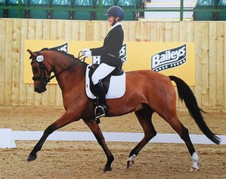 Chocolatier Deluxe WE at the 2016 British Dressage Potential International Dressage Pony Championships.