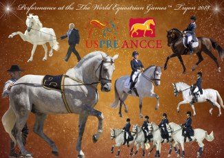 Pure Spanish Horse Exhibition at the 2018 World Equestrian Games