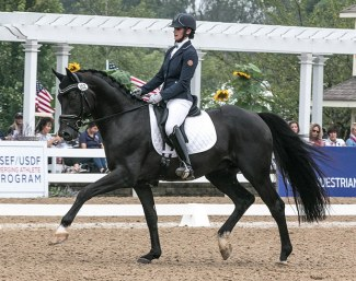 Davos CF (by Dante Weltino) at the 2018 U.S. Young Horse Championships