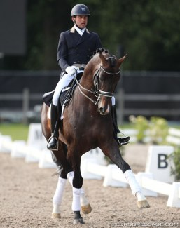 John Thyssen and Zhivago in a stallion demo at the 2014 CDI Kapellen :: Photo © Astrid Appels
