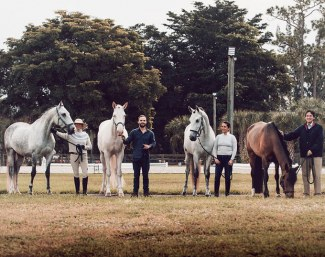 Join the team at Lusitano Masters for the 2020 Wellington show season