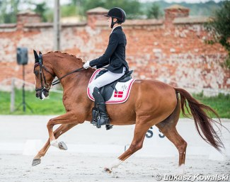 Alexander Yde Helgstrand and Adriano B at the 2019 European Pony Championships :: Photo © Lukasz Kowalski