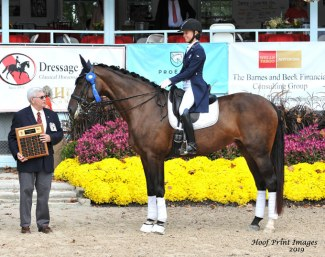 Hannah Irons and Scola Bella at the 2019 CDI-W Devon :: Photo © Hoof Print Images