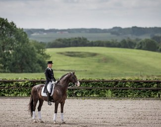 Daniel Bachmann Andersen and Blue Hors Don Olymbrio at Blue Hors Stud in Ranboel, Denmark