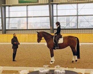 Claire Ploughman and My Happiness learning from Robert Dover at 2019 Dressage Levy Performance Advantage Symposium