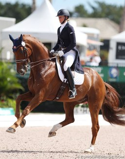 Heather Blitz and Paragon at the 2014 Palm Beach Dressage Derby CDI :: Photo © Astrid Appels