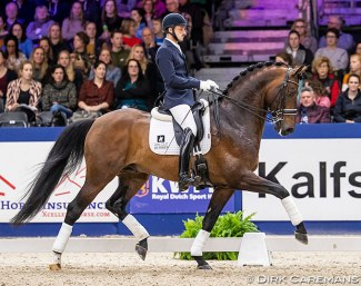 Manuel Springhetti and Inverness at the 2020 KWPN Stallion licensing show :: Photo © Astrid Appels