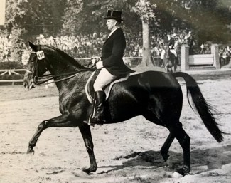 The thoroughbred Chronist xx with his usual rider Willi Schultheis in the early 1950s. Because Schultheis was a professional, jumping legend Fritz Thiedemann rode him on the German dressage team at the 1952 Olympic Games :: Photo courtesy Katharina Schultheis