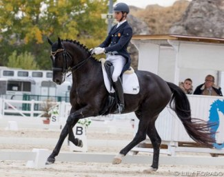 Juan Matute Guimon and Copernico TM at the 2018 Spanish Developing PSG Horse Championships :: Photo © Lily Forado