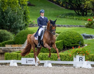 Matthias Rath and Destacado win the Nurnberger Burgpokal qualifier on home turf in Kronberg