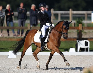 Ine Blommaert on Wise Guy at the 2020 CDI Grote Brogel :: Photo © Astrid Appels