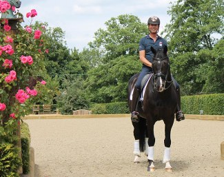 Carl Hester rides his horses on Martin Collins' footing, Ecotrack and Activ-Track