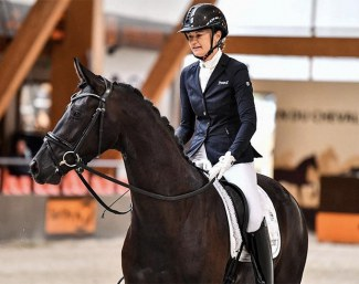 Harpège Grez Neuville (by Danciano x Gribaldi) became the 3-year old French Mare Champion under Jessica Michel-Botton :: Photo © Les Gareness