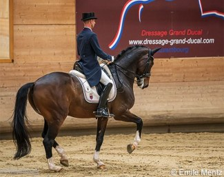 Sascha Schulz on his new Grand Prix horse, the Chinese owner Dayman, at the 2020 Luxembourg Dressage Championships :: Photo © Emile Mentz